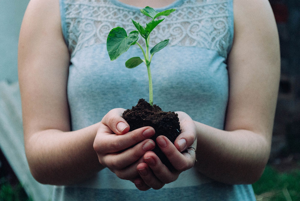 3 things you need to consider if you want a greener lifestyle