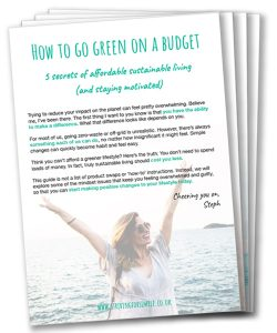 How to go green on a budget and stay motivated